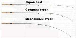 строй