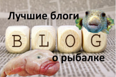 Блоги о рыбалке. Топ тех, кого стоит читать и смотреть.