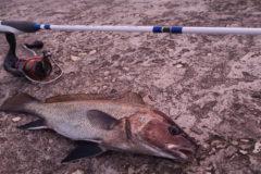 Рыбалка в Крыму. Как поймать новичку?