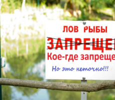 рыбалка запрещена